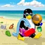 Beach Penguin1